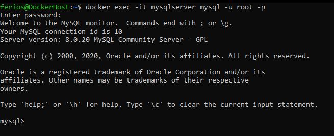 Navigating MySQL container